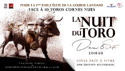 Lire la suite : La Nuit du Toro, spectacle total et émotions garanties...