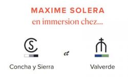 Lire la suite : Maxime Solera en immersion au campo...