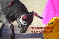 Introduction à la Corrida